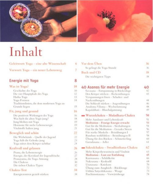 Das Große Yoga Basisbuch | Yoga Buch