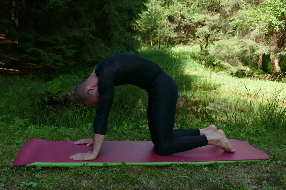 Yoga-Übung Vyaghra Pranayama – Tigeratmung-Katze dynamisch Yoga bei Bandscheibenvorfall