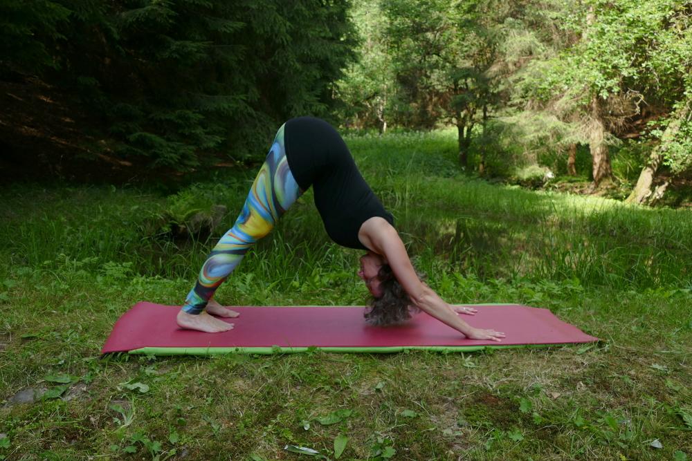 Yoga Übung Adho Mukha Svanasana – abwärtsschauender Hund Yoga für Anfänger
