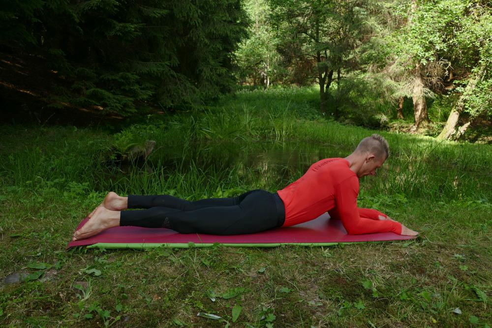 Yoga Übung Ardha Bhujangasana – die Halbe Kobra oder Sphinx Yoga für Anfänger