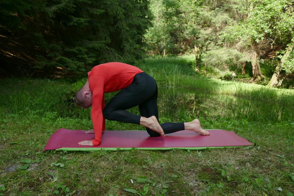 Yoga Übung Cakravakasana Variation – Die Katze streckt ihr Bein mit Katzenbugel