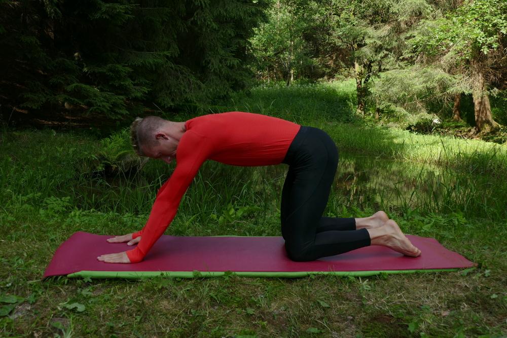 Yoga Übung Gedrehte Dehnung Ausgangsposition Yoga für Anfänger