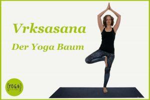 Der Yoga Baum - vrksasana