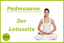 Lotussitz - Padmasana
